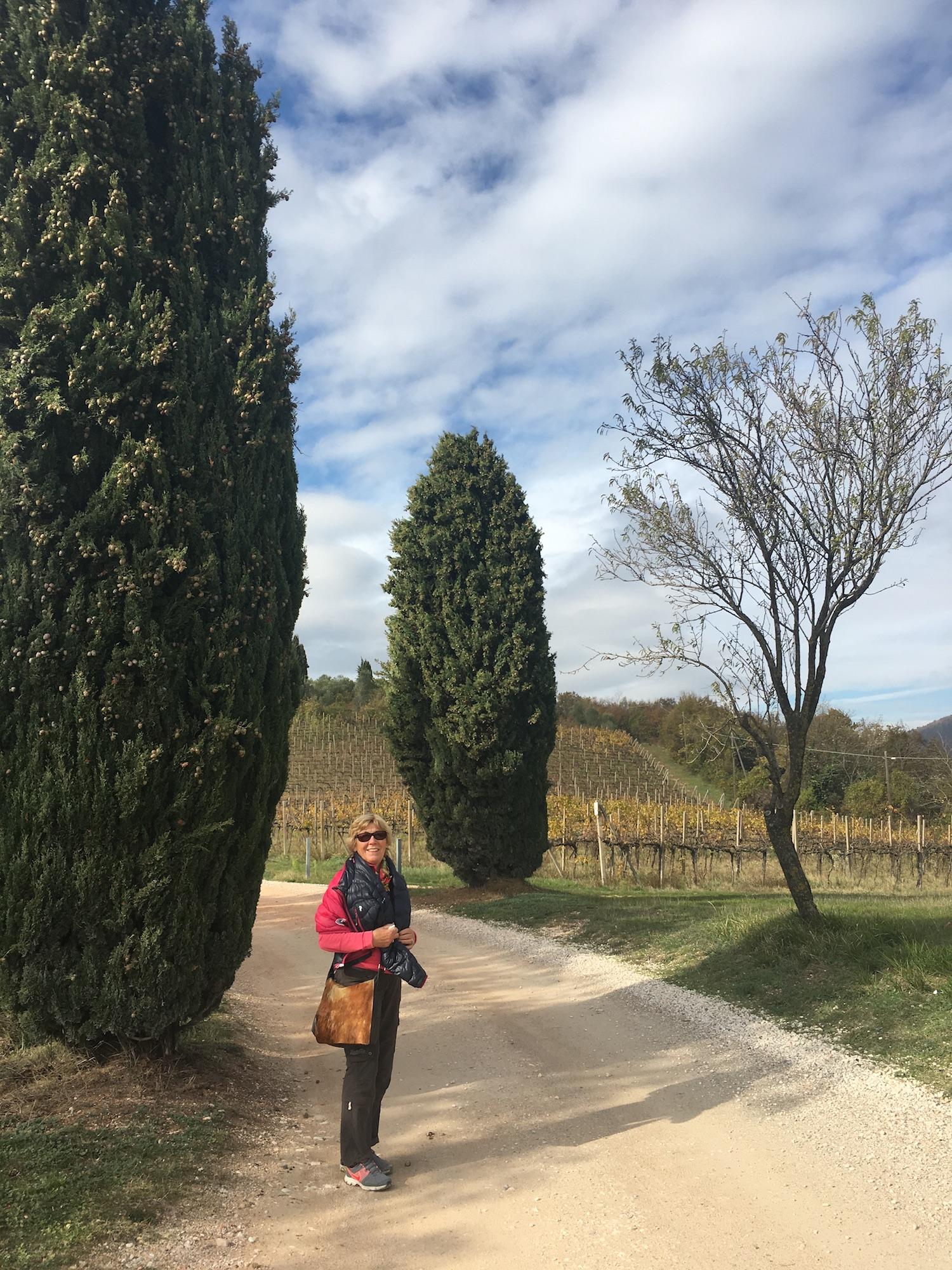 Abano Terme Wandern